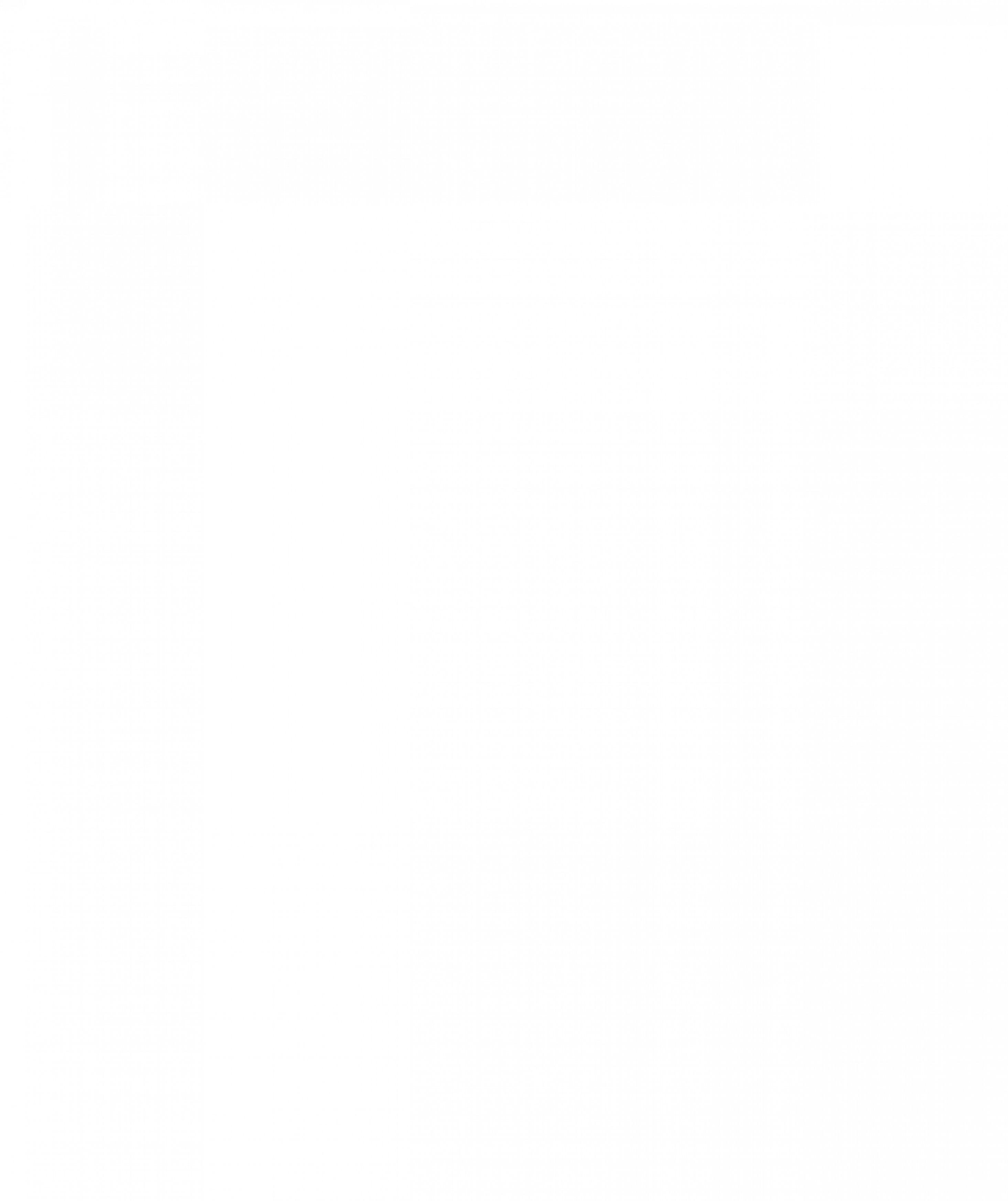 Ciabattabrot / Focacciabrot